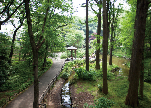 林試の森公園(りんしのもりこうえん)